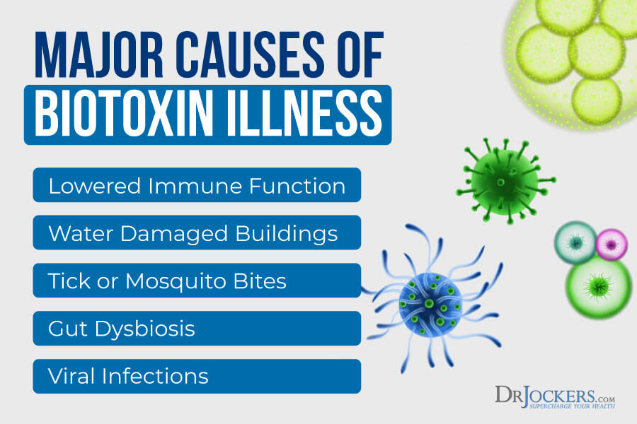 Biotoxin, BioToxin Illness:  Symptoms, Causes and Healing Protocol