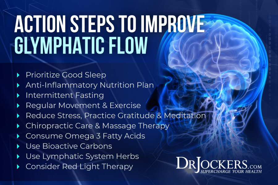 glymphatic system, Glymphatic System: Critical for Brain and Immune Health