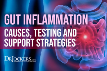 gut inflammation, Gut Inflammation: Causes, Testing & Support Strategies