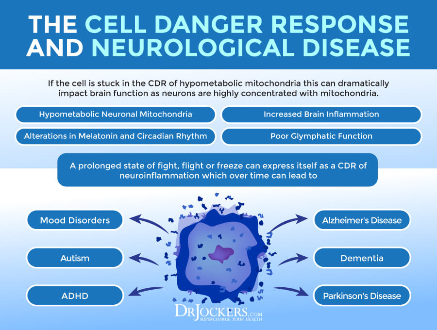 Cell Danger Response, The Cell Danger Response: New Theory for Chronic Illnesses